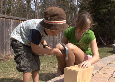 Building a Kit Bird House