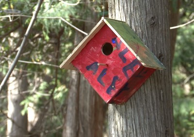 Painting Your Bird House